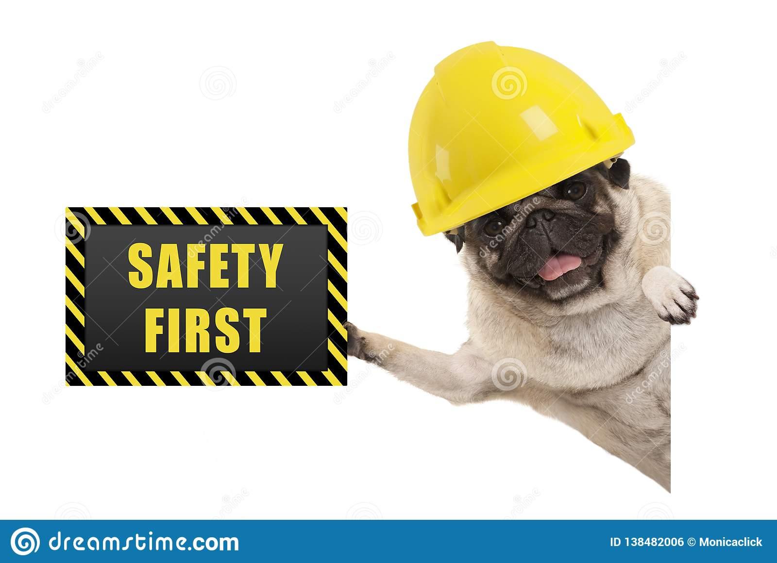 sicurezza_cani