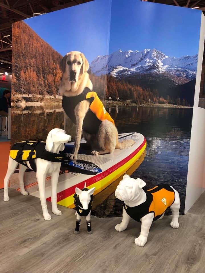 cani-loro-sicurezza